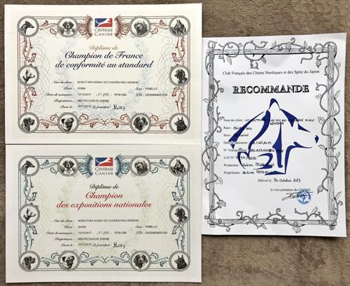 Diplome-titres-Shiba-inu-Championne-de-France-National-Champion-Cotation-4-CFCNSJ-club-Chuken-Kiku-Kensha-elevage-CKK-Nobutora-Kigiku-Nobuko-femelle-female-sesame-carrier-ayaw-stud