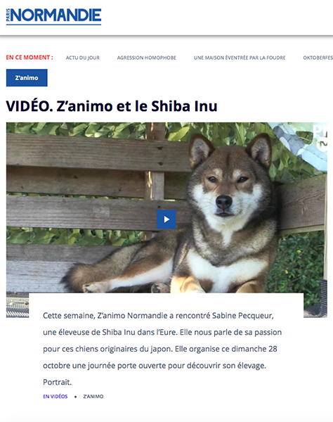 paris-nornamdie-zanimo-elevage-shiba-inu-CKK-education-emission