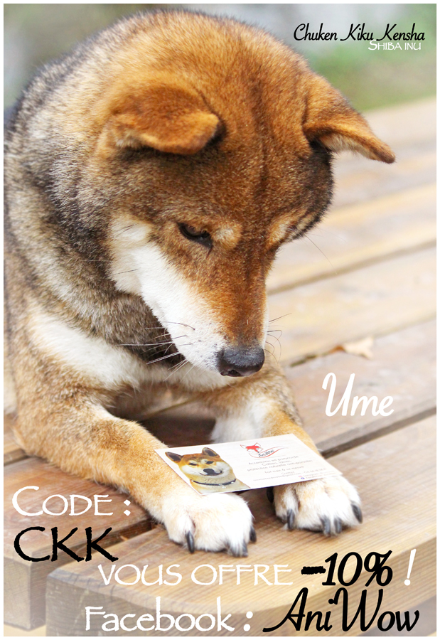 code-promo-CKK-boutique-canin-dog-shop