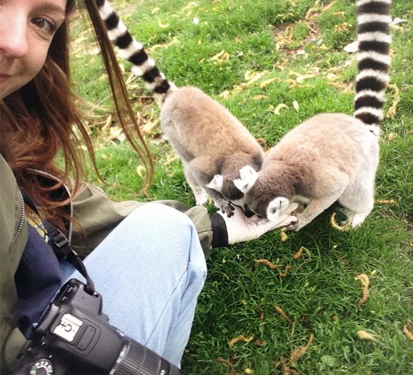 soigneur-un-jour-elevage-CKK-shiba-inu-Sabine-lemurien