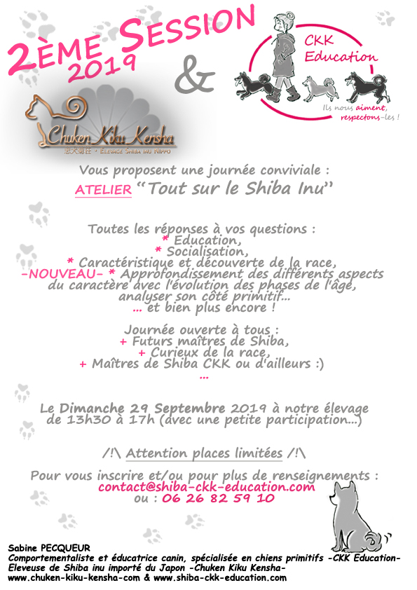 Tout-sur-le-Shiba-inu-CKK-Education-canine-chien-primitif-elevage-Chuken-kiku-kensha-socialisation-chiot-caractere-question-race-japonaise-evenement-canin-journee-information-atelier-educatif