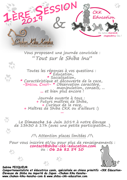 Tout-sur-le-Shiba-inu-CKK-Education-canine-chien-primitif-elevage-Chuken-kiku-kensha-socialisation-chiot-caractere-question-race-japonaise-evenement-canin-journee-information-atelier