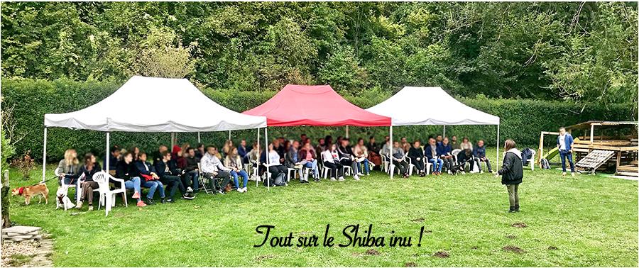 Tout-sur-le-Shiba-inu-seminaire-conference-cours-collectif-atelier-canin-education-canine-information-race-japonaise-renseignement-chien-japonais-CKK-elevage-chuken-kiku-kensha