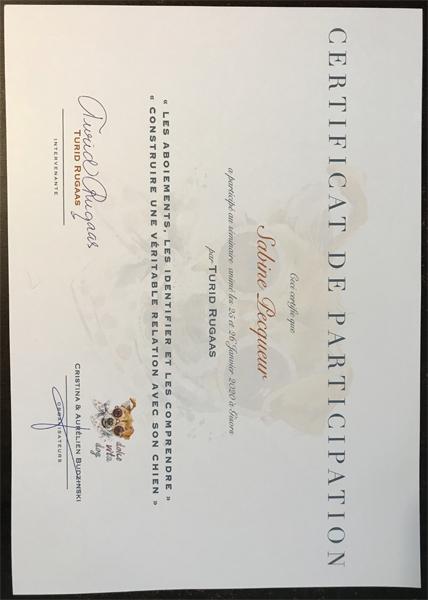 certification-seminaire-canin-Turid-Rugaas-comportement-education-CKK-Shiba-Sabine-Chuken-Kiku-Kensha-elevage-formation